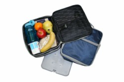 Fridge-to-Go Medium Lunch bag cooler